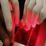 Becoming a Certified Fingerprint Roller